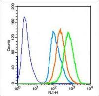 Flow cytometric analysis of Hela cells using SMC1 antibody.
